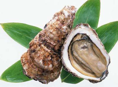 ノロウイルスが多い生牡蠣