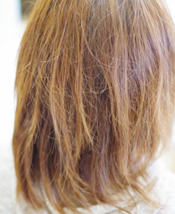 バサバサになった髪