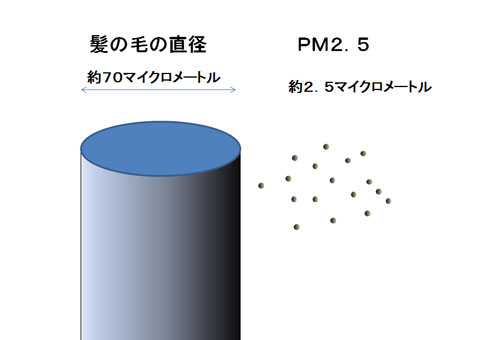 PM2.5と髪の毛の大きさ比較