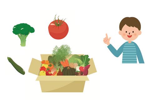 身体をアルカリ性にする野菜
