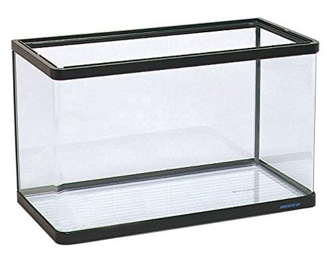 曲げガラスの60cm水槽