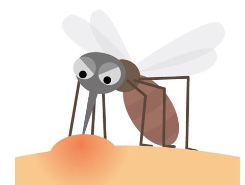 人の血を吸っている蚊
