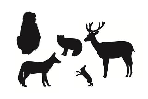 マダニを媒介する野生動物