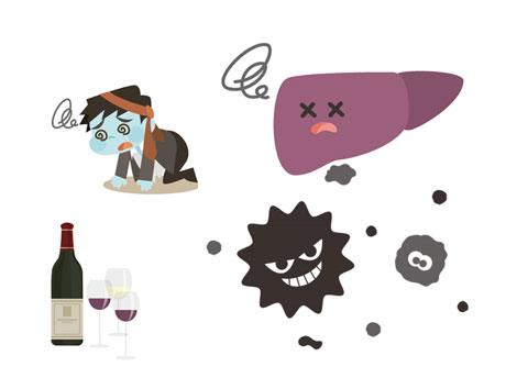 お酒とインフルエンザウイルス