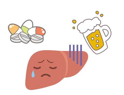 アルコールと薬の分解で限界に来ている肝臓