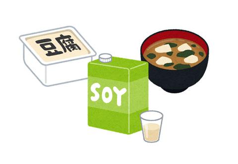 大豆食品の例