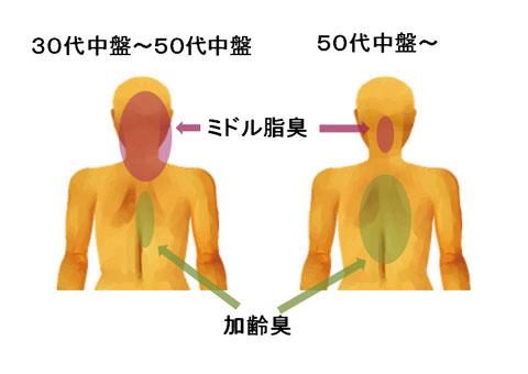 ミドル脂臭と加齢臭が出てくる身体の場所