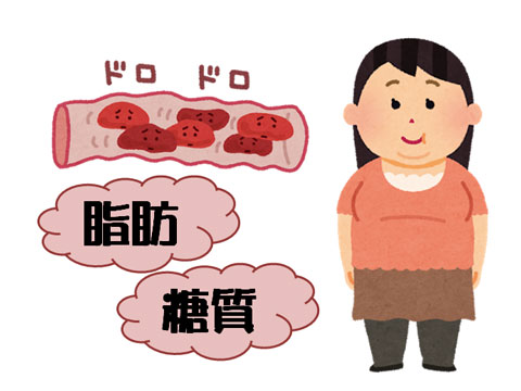 脂肪と糖質で血液がドロドロの人