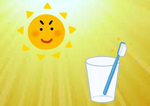 太陽の光を浴びている歯ブラシ