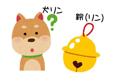 犬と鈴(リン)