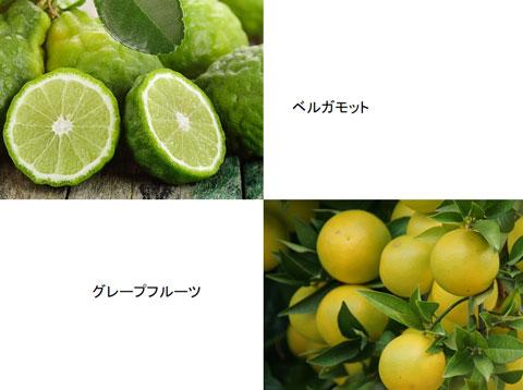 ベルガモットとグレープフルーツ