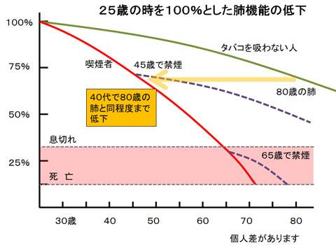 喫煙者の肺機能の低下グラフ